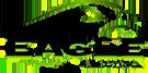 Eagle Electric of Auburn LLC.